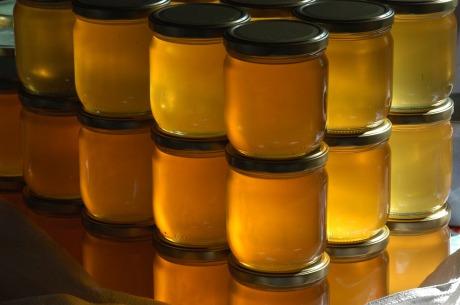 honey, med, propolis, Društvo pčelara Đerdap, pčelarsko društvo, ekonec, ekonec mesečnik, Milisav Pajević,