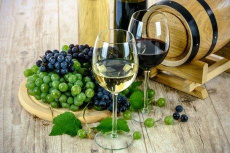 wine, vino, ekonec, ekonec mesecnik, Milisav Pajević, pravilnik,